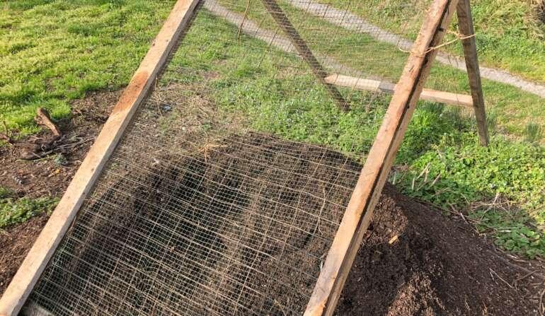 compost setacciato